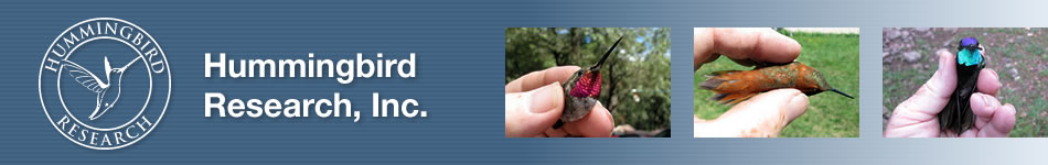 Hummingbird Research banner